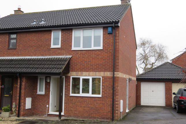 Thumbnail Semi-detached house to rent in Tyne Park, Taunton