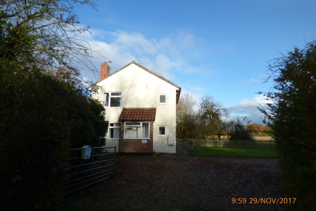 Thumbnail Detached house to rent in North Green, Stoven, Beccles