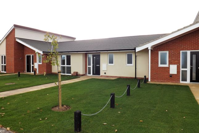 Thumbnail Terraced bungalow for sale in 2 Rye Terrace, Wangford Road, Reydon, Nr Southwold