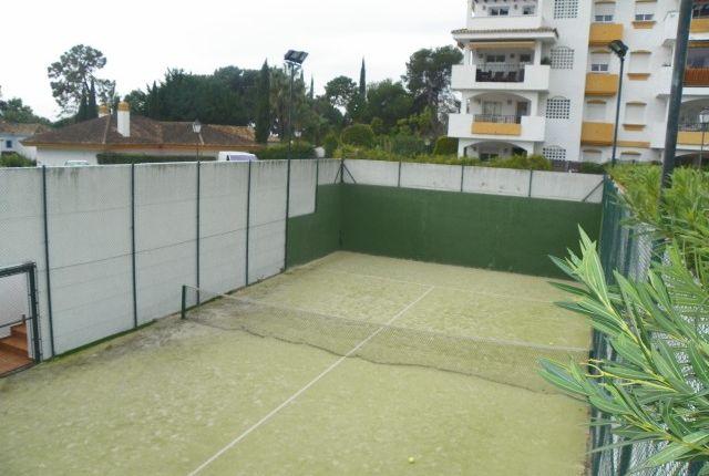 Paddle Tennis of Spain, Málaga, Marbella, Nagüeles