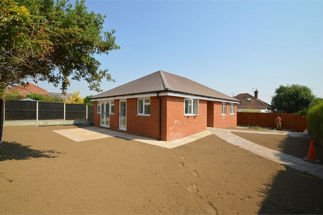Thumbnail Detached bungalow for sale in Alexandra Road, Sible Hedingham, Halstead, Essex