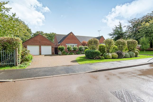 Thumbnail Detached bungalow for sale in Church Gate, Whaplode, Spalding