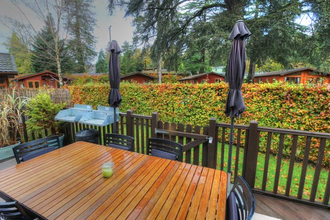 Thumbnail Mobile/park home for sale in Fallbarrow Park, Windermere