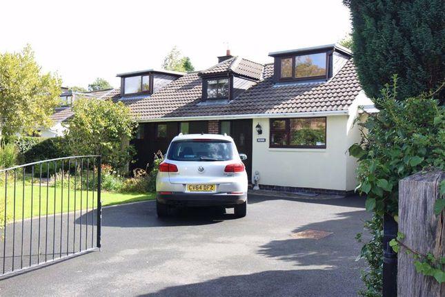 Thumbnail Detached bungalow for sale in Lon Glanfred, Llandre, Bow Street