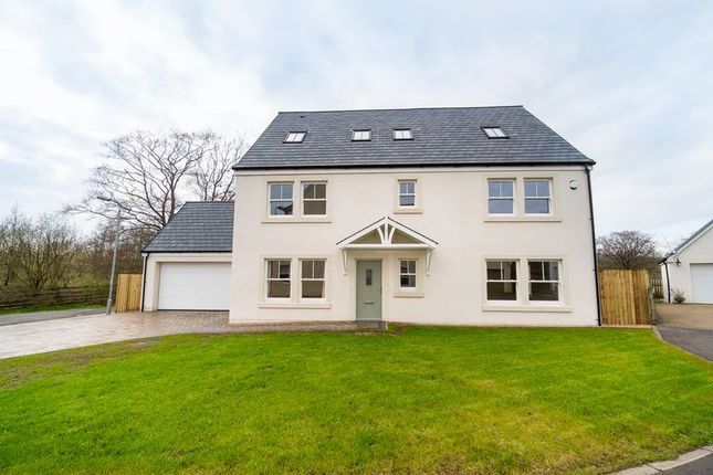 Thumbnail Property for sale in Fenwick, Kilmarnock
