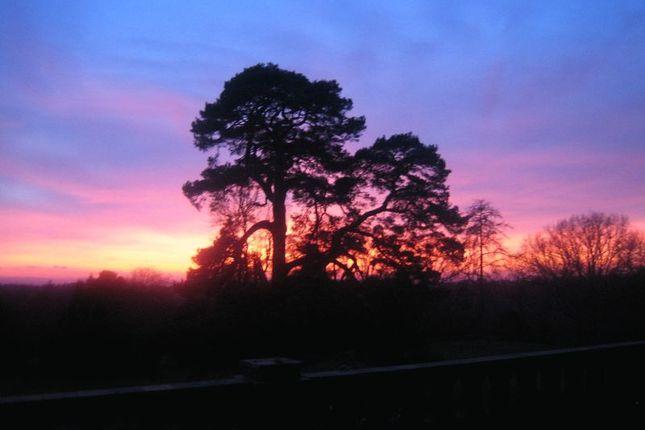 Photo 17 of Chelwood Vachery, Millbrook Hill, Uckfield TN22