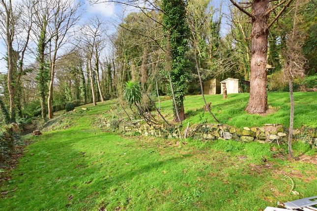 Front Garden of Old Park Road, Ventnor, Isle Of Wight PO38