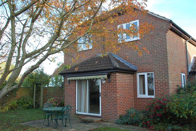 Thumbnail Detached house to rent in Braystone, Little Court Lane, Edington