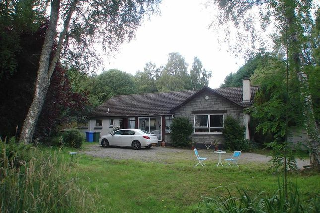 Thumbnail Bungalow for sale in Croy, Inverness