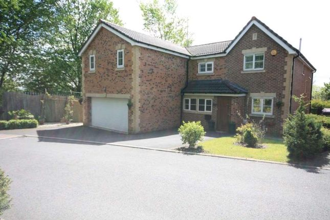 Thumbnail Detached house to rent in Degas Close, Salford