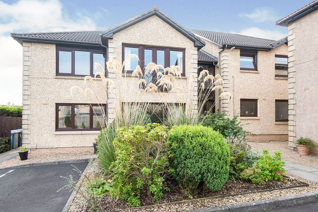 Thumbnail Flat for sale in Clyde Court, Carluke, South Lanarkshire