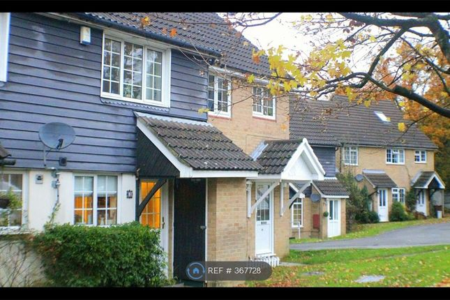 Thumbnail Terraced house to rent in Frenches Farm Drive, Heathfield