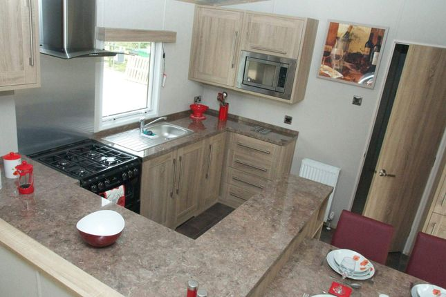 Static Holiday Lodge For Sale Devon 9