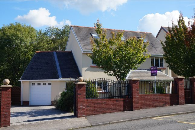 Thumbnail Detached house for sale in Birchgrove Road, Glais