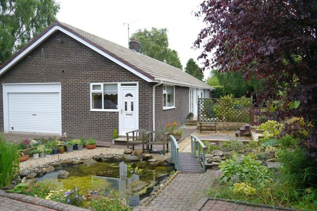 Thumbnail Detached bungalow for sale in Parklands, Ponteland, Newcastle Upon Tyne