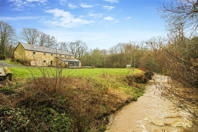 Thumbnail Detached house for sale in Brainshaugh, Morpeth, Northumberland