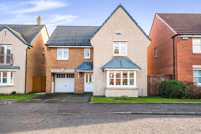 Thumbnail Detached house for sale in Birdland Avenue, Bo'ness
