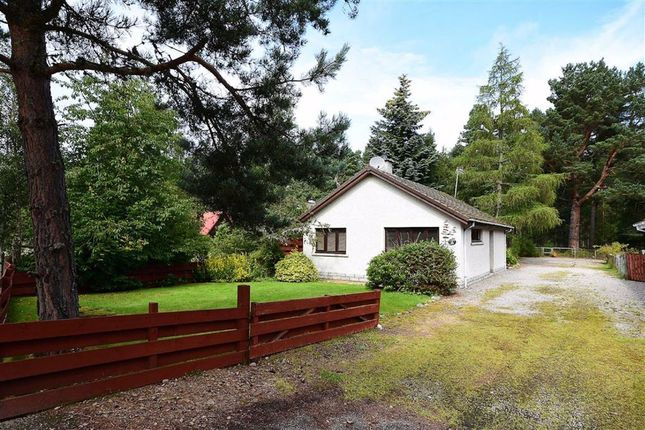 Thumbnail Detached bungalow for sale in Nethy Bridge