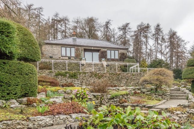 Thumbnail Detached bungalow for sale in Wayside, Brigsteer Road, Kendal, Cumbria