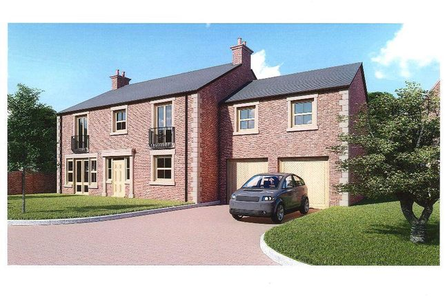 Thumbnail Detached house for sale in Hackforth, Bedale