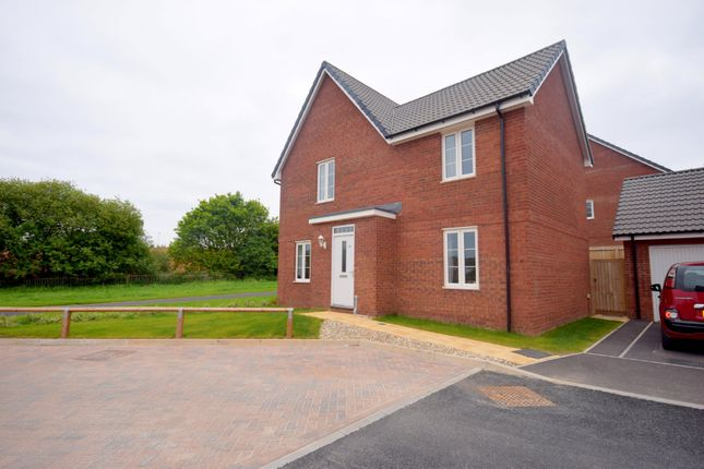 Thumbnail Detached house to rent in Bunker Square, Exeter