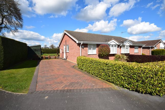 2 bed semi-detached bungalow to rent in Trentham Road, Wem, Shrewsbury SY4