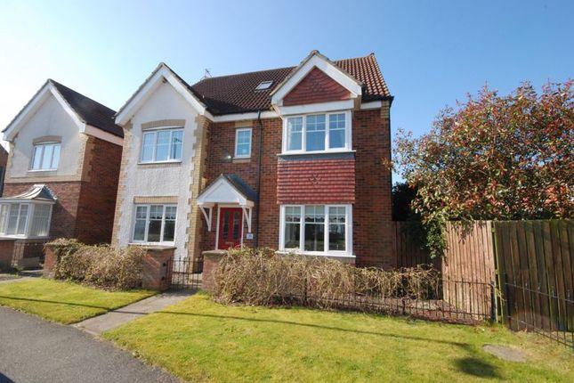 Thumbnail Detached house for sale in Rothbury Drive, Ashington