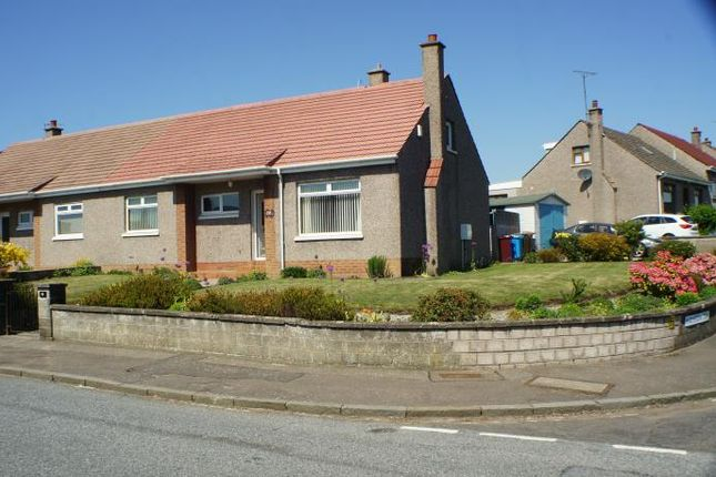 Thumbnail Semi-detached bungalow to rent in Dalrymple Terrace, Dundee