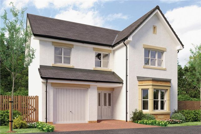 "Thumbnail Detached house for sale in ""Yeats"" at Broomhouse Crescent, Uddingston, Glasgow"