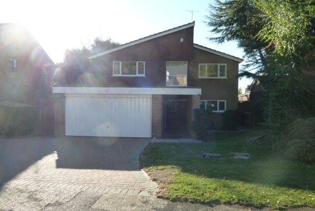 Thumbnail Detached house to rent in Daltry Road, Stevenage