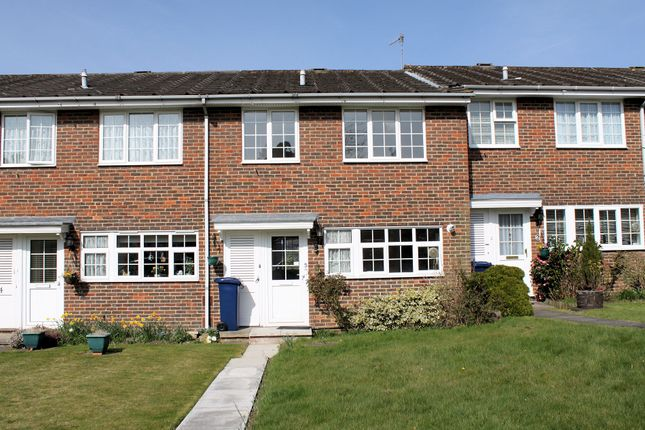 Thumbnail Terraced house to rent in Oaklands, Haslemere