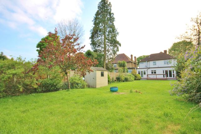 Thumbnail Detached house for sale in The Avenue, Lower Sunbury, Middlesex