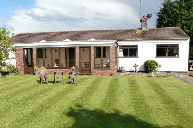 Thumbnail Bungalow to rent in Bulkington Lane, Nuneaton