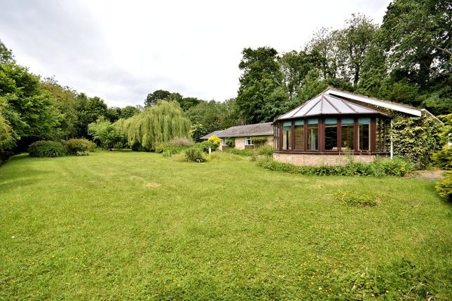 Thumbnail Detached bungalow for sale in Twyford, Dereham