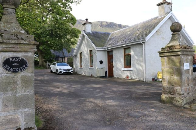 Thumbnail Detached bungalow for sale in Kinross