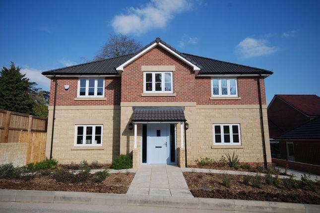 Thumbnail Detached house for sale in Elmhurst Gardens, Trowbridge