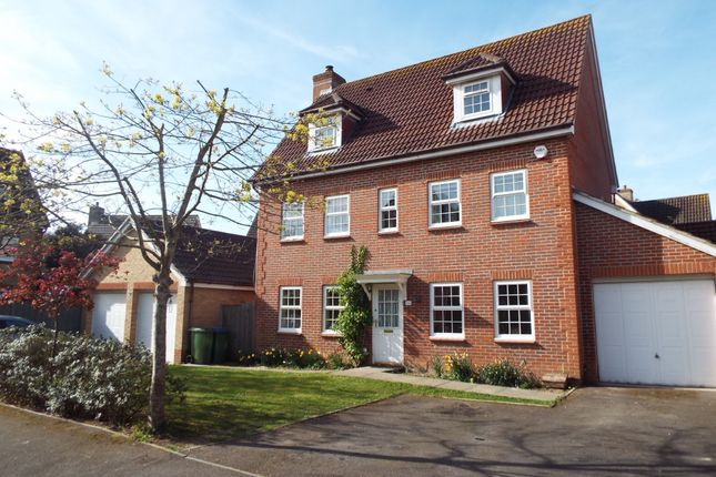 Thumbnail Detached house for sale in Metcalfe Avenue, Stubbington, Fareham, Hampshire