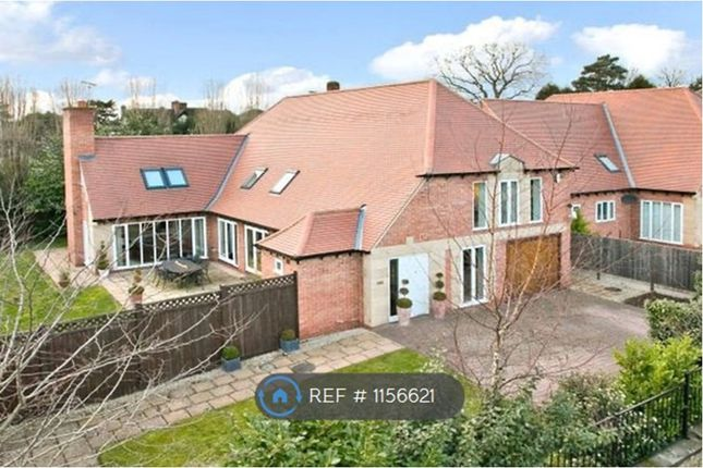 Thumbnail Detached house to rent in Middleton Crescent, Beeston, Nottingham