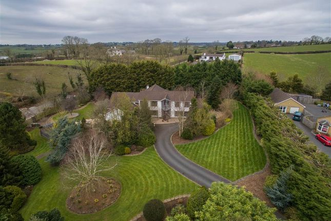 Thumbnail Detached house for sale in 26, Birch Grove, Craigavon