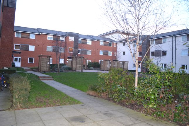 Thumbnail 2 bed flat to rent in Pownall Road, Ipswich