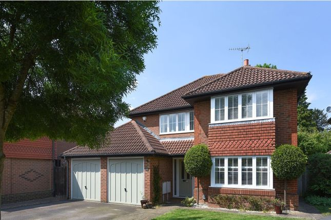 Thumbnail Detached house to rent in Suffolk Combe, Warfield
