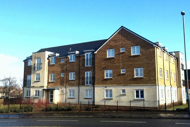 Thumbnail Flat to rent in Druids Close, Caerphilly