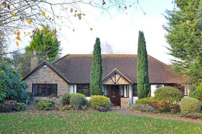 Thumbnail Bungalow to rent in Church Road, Cookham, Maidenhead