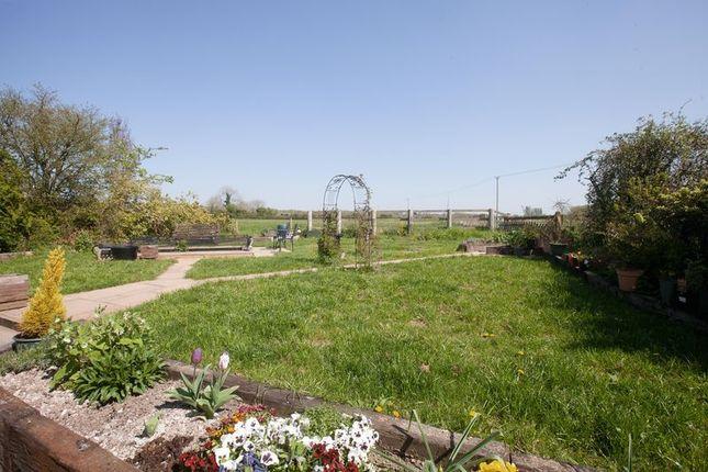 Rear Garden of Mill Lane, Mere, Warminster BA12