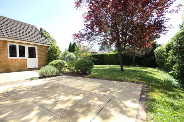 Property For Rent Rotherfield