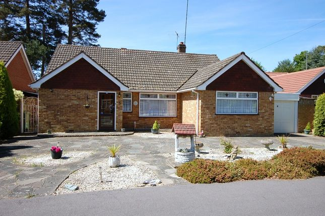 Thumbnail Bungalow for sale in Ramsay Road, Windlesham