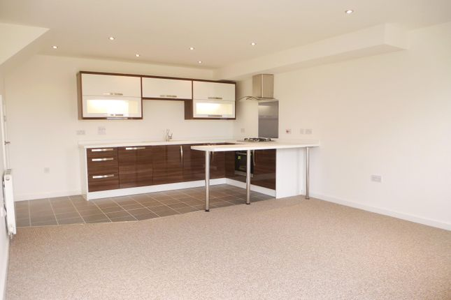Thumbnail Property to rent in Hawks Ridge, New Road, Saltash