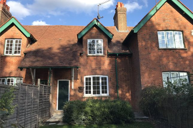 Thumbnail Terraced house to rent in Waterend Lane, Wheathampstead, St. Albans