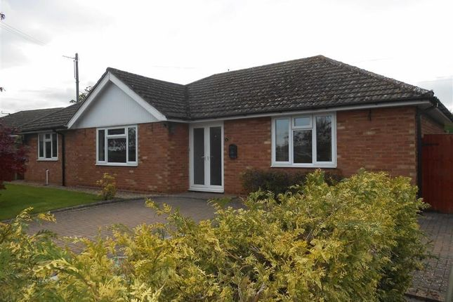 Thumbnail Bungalow to rent in Canon Drive, Hereford, Herefordshire
