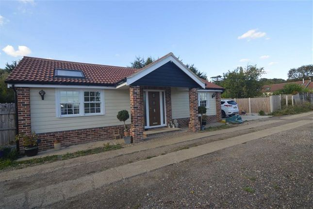 Thumbnail Detached bungalow for sale in Kirkham Shaw, Horndon-On-The-Hill, Essex